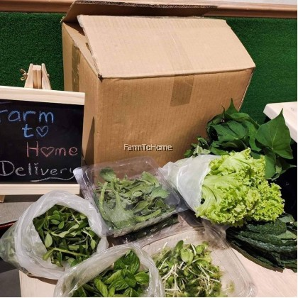 Regular Monthly Package RM192/Mth (9 types or RM54 worth of Veggie for 4 Deliveries/mth) Suitable for 2 -3 ppl